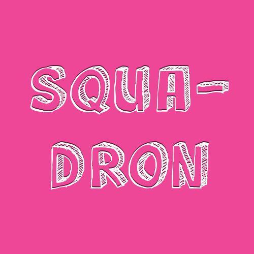 "2 Collective Noun Examples With ""Squadron"""
